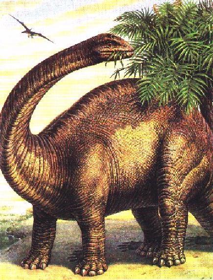 http://animals.timduru.org/dirlist/dino/Dinosaurus-Brontosaurus-Dinner-welcome21.jpg